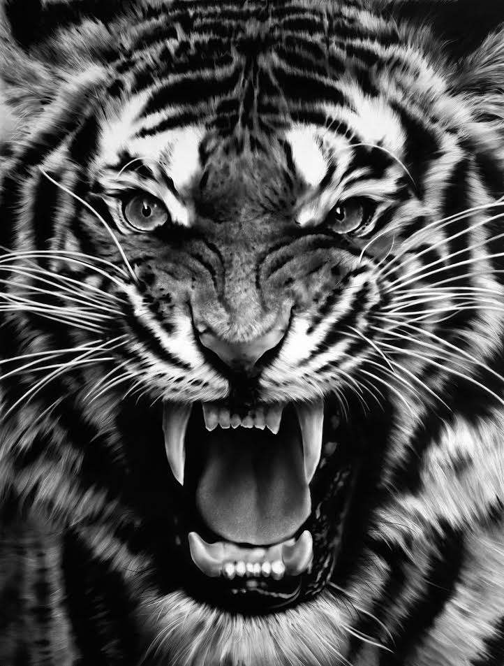 Robert Longo - untitled Roaring Tiger
